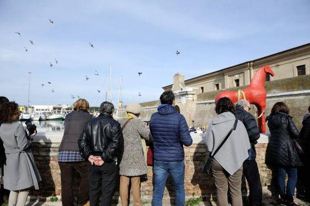 Tanti curiosi ad ammirare l'arrivo del cavallo di Mimmo Paladino (foto Emma)