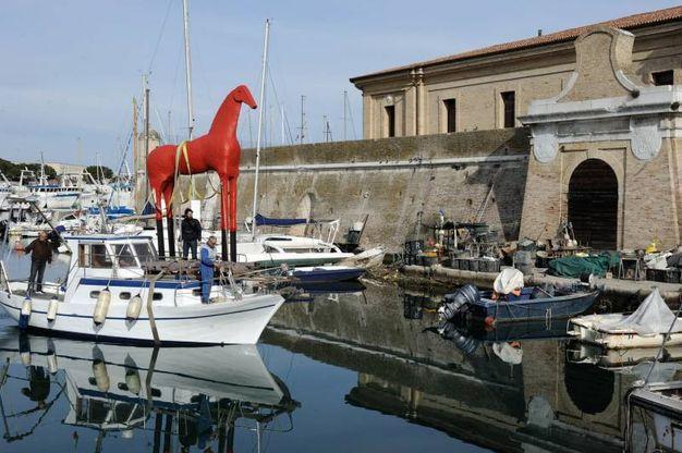Trasportata da un peschereccio la statua del cavallo di Paladino (foto Emma)