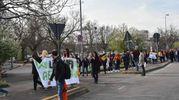 Girotondo degli studenti attorno al palazzo di giustizia dove si sta svolgendo il processo Aemilia (Artioli)