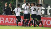 La gioia dei giocatori del Cesena per la vittoria sulla Ternana (foto Ravaglia)