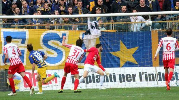 Il gol di Calaiò (foto LaPresse – Raffaele Rastelli)