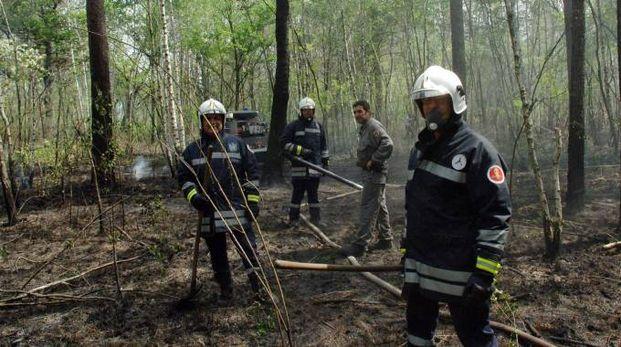 L'incendio nel Parco delle Groane