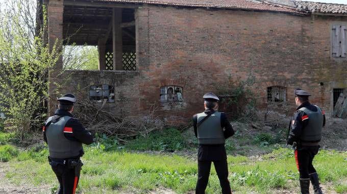Un momento delle battute di ricerca dei carabinieri nella Bassa