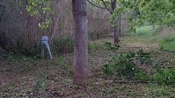 Un volontario già al lavoro sul sentiero da ripulire