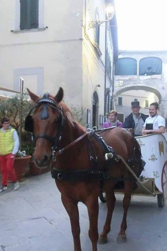 La Via Crucis a Portico (foto Cappelli)