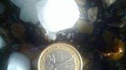 Un chicco di grandine grosso come una moneta da un euro (da Tatiana Starkova)