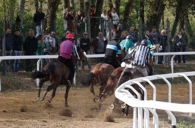 Corse a Monticiano (Foto Lazzeroni
