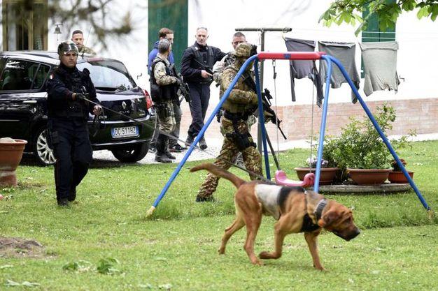 I cani impegnati nelle ricerche di Igor - Norbert (Foto Businesspress)