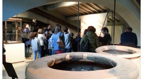 Il museo archeologico di Artimino