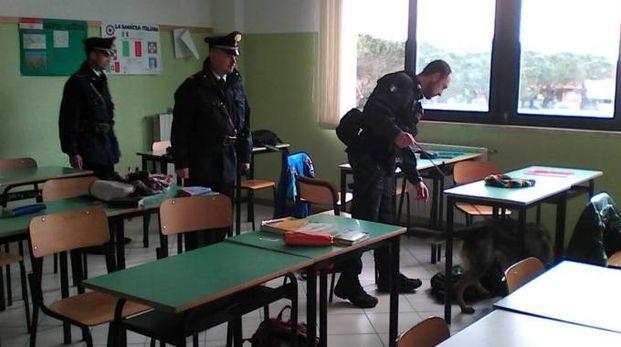 Porto Sant'Elpidio, controlli antidroga nelle scuole