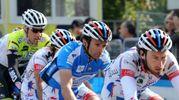 L'Aquila di Filottrano vinse il Giro d'Italia 2011 (Foto Calavita)