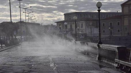 Vento forte a Livorno: l'acqua sul viale Italia (Novi)