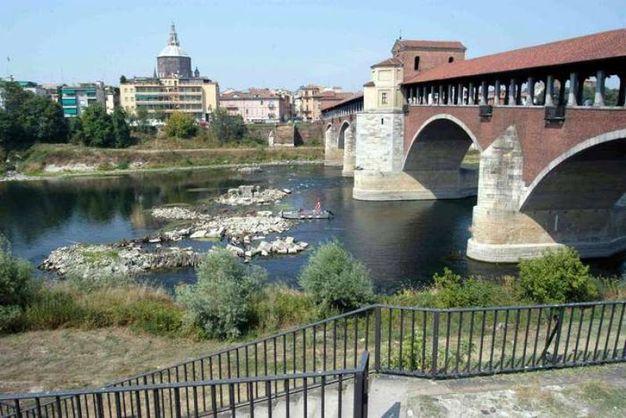 15 - Pavia