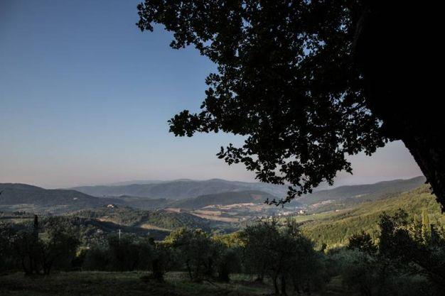 Santa Brigida (Firenze)