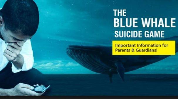 Blu whale, il gioco del suicidio