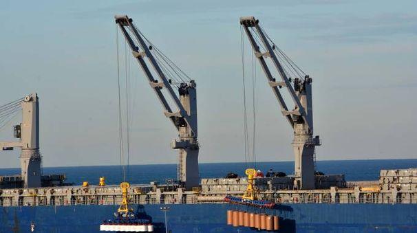 Uno scorcio del porto di Livorno  (Foto Novi)
