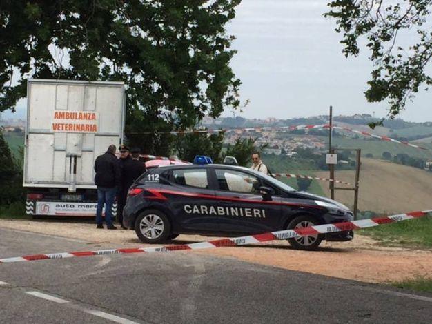 Sul posto i carabinieri (foto Santini)