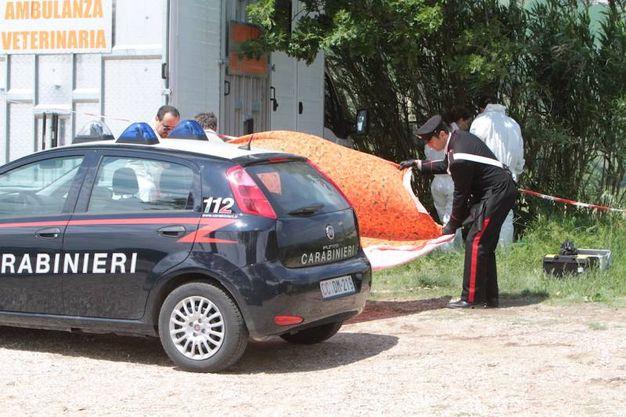 I rilievi dei carabinieri nel luogo dell'omicidio (foto Antic)