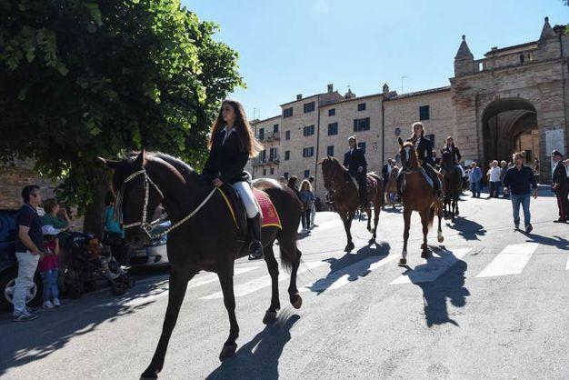 Cavalli per l'ultimo saluto a Pinciaroli (foto De Marco)