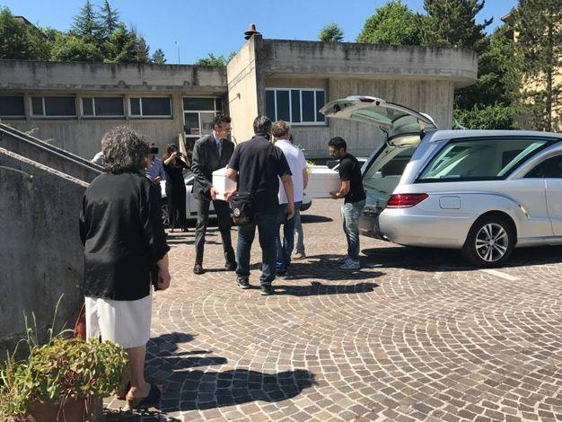 L'arrivo del feretro di Francesco in chiesa a Cagli (Foto Carnali)