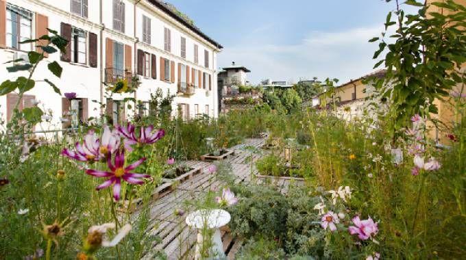 L'orto sul tetto di Piuarch a Milano