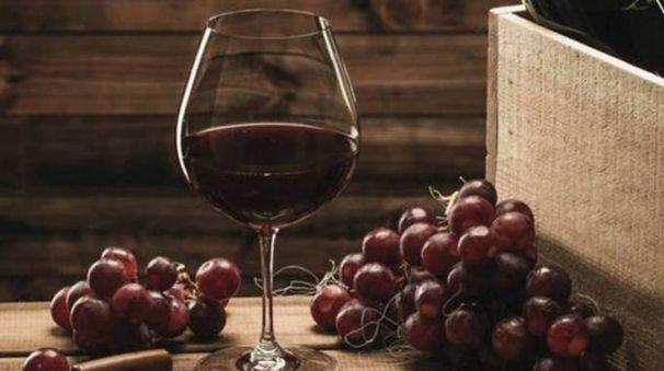Il mondo del vino protagonista a Lariofiere