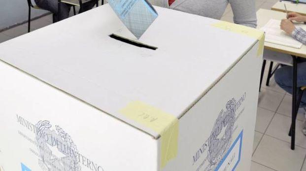 Elezioni comunali 2017. Segui i risultati in tempo reale (foto Spf)