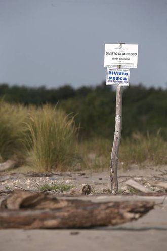 Alcuni tratti della spiaggia sono preclusi al passaggio dei bagnanti (foto Zani)