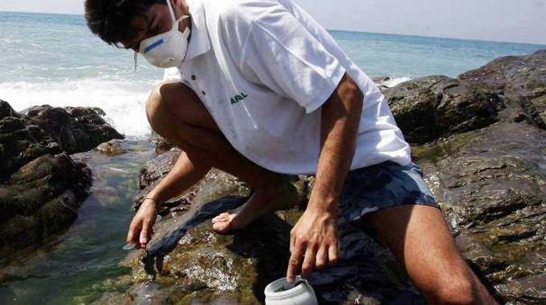 Prelievi di alga tossica da parte di un tecnico dell'Agenzia per la Protezione dell'Ambiente
