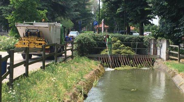 Gli operatori di Amsa e della cooperativa Multiservizi hanno liberato le griglie