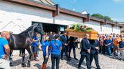 """Ad attendere l'uscita della bara dalla chiesa, anche gli amici del ristoratore membri dell'associazione """"Passione Equestre"""" che hanno portato il cavallo di Roberto Amici, a cui lo legava una passione profonda (Foto Zeppilli)"""