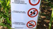 Le regole che si chiede cortesemente di rispettare (Foto Scardovi)