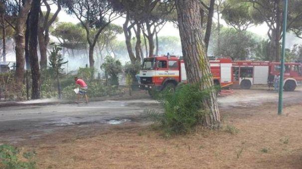 I vigili del fuoco hanno spento quasi 170 roghi finora
