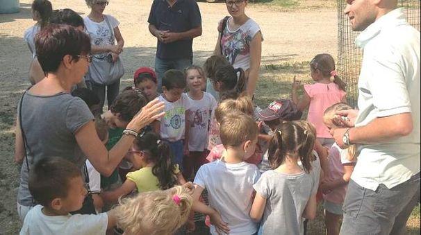Bambini entusiasti della visita alla fattoria Banfi