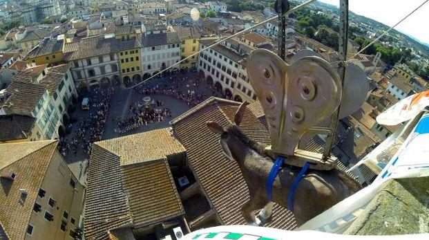 Il ciuco pronto a volare su Empoli (Gianni Nucci / Germogli)