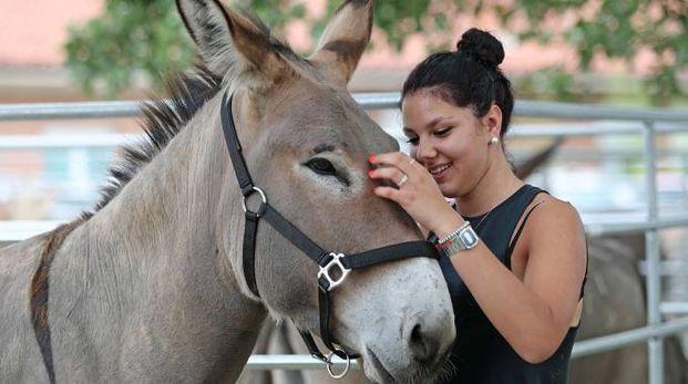 Ad attrarre adulti e bambini sono stati soprattutto i concorsi per animali