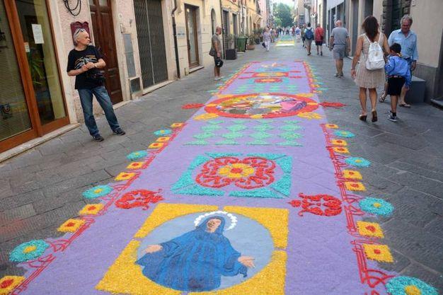 Camaiore, i tappeti di segatura: Ragazze del Palinsesto (foto Aldo Umicini)