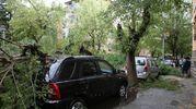 Via Gulli (foto Zani)