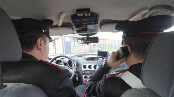 Sono intervenuti i carabinieri della stazione dell'Arma di Lendinara L'uomo  è stato denunciato