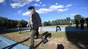 Tutto pronto a Modena Park (Foto Ansa)