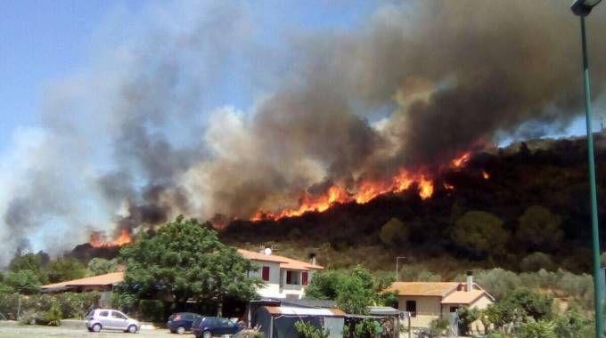 L'incendio di Castiglione della Pescaia