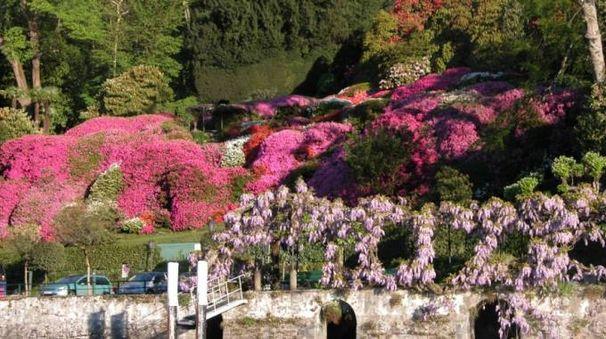 I giardini di Villa Carlotta