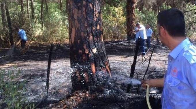 I danni del fuoco
