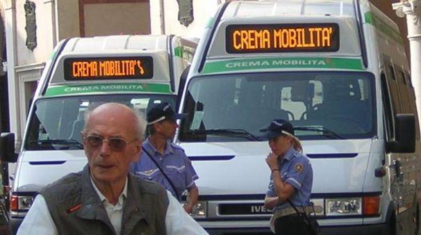 Gli autobus utilizzati per il servizio cittadino