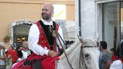 Cavaliere di Tufilla (Foto Labolognese)