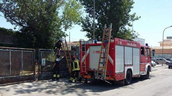 Vigili del fuoco al lavoro dopo il crollo a San Benedetto del Tronto in via Calatafimi