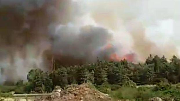 L'incendio a Piancastagnaio