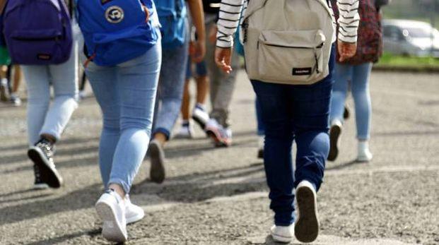 Srudenti, adolescenti, foto generica (Germogli)