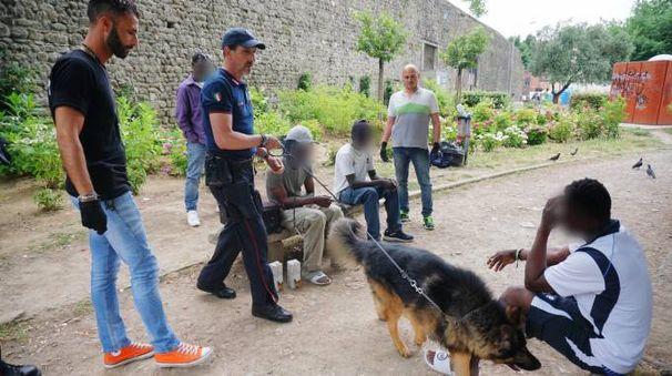 Controlli e alcuni arresti per droga (foto Acerboni/Castellani)