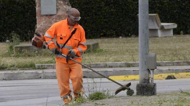 I volontari vorrebbero ripulire un tratto di strada